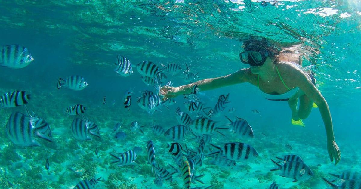 snorkel en Los Cabos