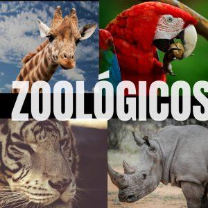 Zoológicos